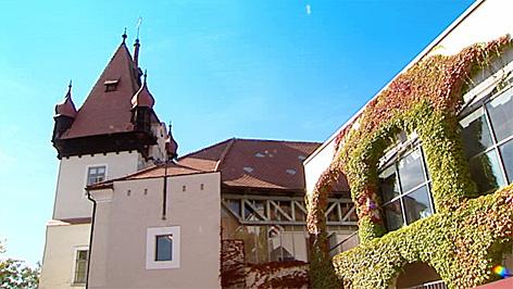 RISC-Institut im Schloss Hagenberg