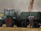 Traktor mit Anhänger bei der Ernte