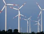 Ein Windpark im Wald