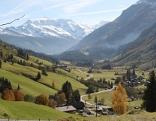 Rauriser Landschaft - grüne Wiesen, bäume und im Hintergrund schneebedeckte Berge