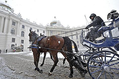 Fiakerfahrer im Schnee