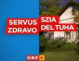 Logo der Sendung SSZD