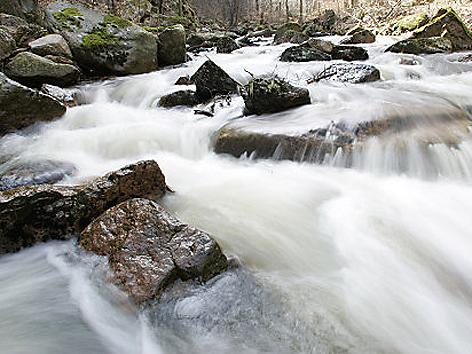Wildbach Grundwasser