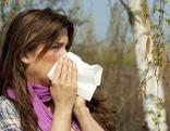 Pollen Heuschnupfen Allergie