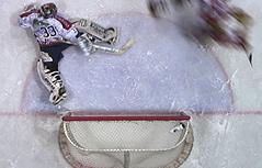 Eishockey Goal