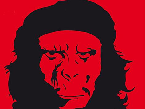 Che Guevara Affenkopf