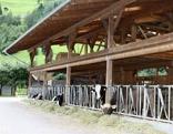 Schneggahof in Imst mit Schule am Bauernhof und Hofladen