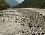Lech Wildfluss Ufer im Bereich der künftigen Verbauung