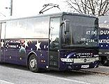 Sternebus
