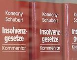 Insolvenzrecht Bücher