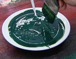 Farbe in Teller für den Handdruck