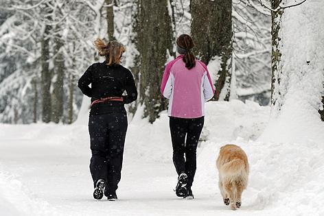 Joggen mit dem Hund, bei Schnee