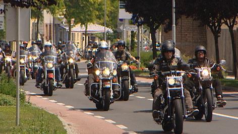 Bär auf Harley Davidson