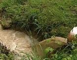 Rohr, Wasser fließt ab