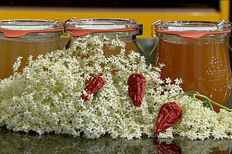 Hollerblütengelee in Gläsern davor Hollerblütendolden und Chilischoten