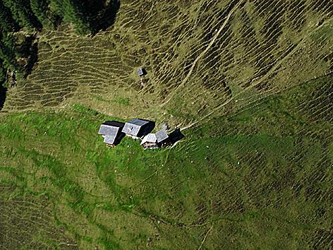 Alm Landwirtschaft Almhütte Almweide Almen Almwanderung Sommerfrische Almsommer Weide Berglandwirtschaft Almkühe