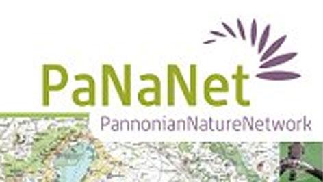 Pananet logo