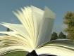 Aufgeschlagenes Buch vor Baum