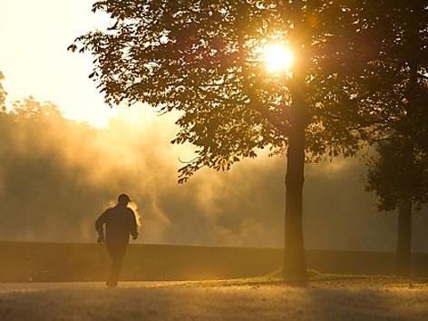 Laufen in Sonne und Nebel