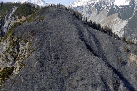 Waldbrand Einsatz