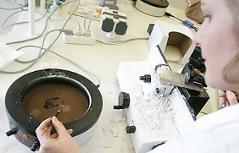 Labor der Pathologie mit Mitarbeiterin