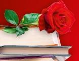 Bücher mit Rose