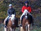 Reitergruppe am Waldrand