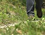 SSC Lussari Pilgern Alpe Adria