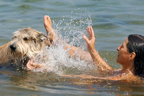 Hund und Frau baden im See