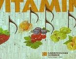 Carinthischer Sommer Plakatsujet mit Früchten und Noten