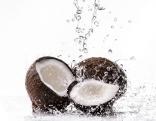 Kokosnüsse und Wasser