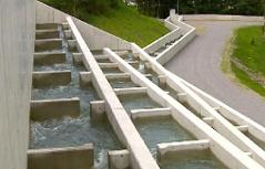 Betonierte Fischtreppe