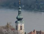Kirche in Stein an der Donau mit Marillenbäumen