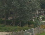 Neustifter Friedhof in Währing