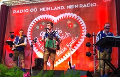 Musiktag am Urfahranermarkt 09/2014