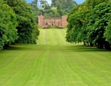 englischer Rasen