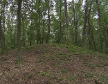 Hügelgrab in Schandorf
