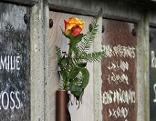 Blumenschmuck an Urnengrabstelle