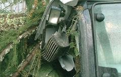 Sturm Unwetter Stromausfälle Traktor
