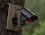 Videokameras überwachen Spazierweg