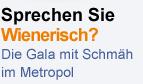 Sprechen Sie Wienerisch?