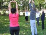 Eine Gruppe macht gemeinsam Yoga