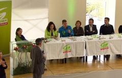 Landesversammlung Grüne