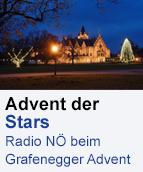 Grafenegger Advent 2014