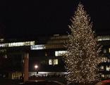 Weihnachtsbaum illuminiert