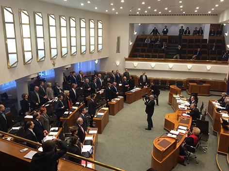 Verfassungsreform, Landtag