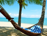 Palmen und Strand und Hängematte