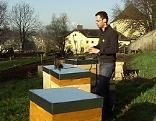 Bienenzucht auf dem Kapuzinerberg