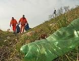 Müll im Straßengraben