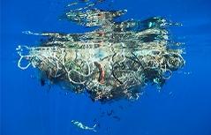 Unter der Wasseroberfläche, Great Pacific Garbage Patch, 2009